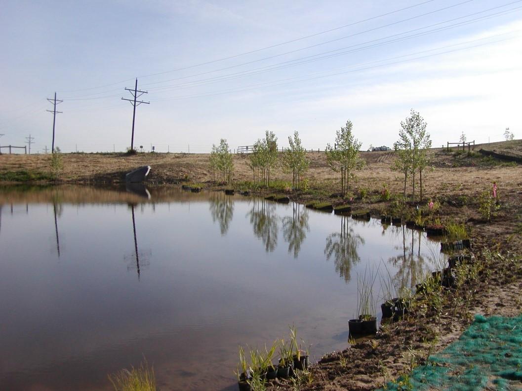 wernimont-ponds-project3