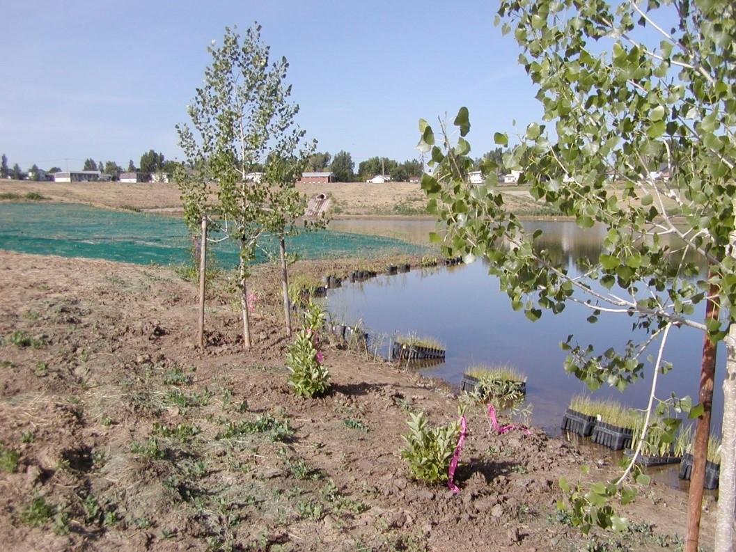 wernimont-ponds-project4