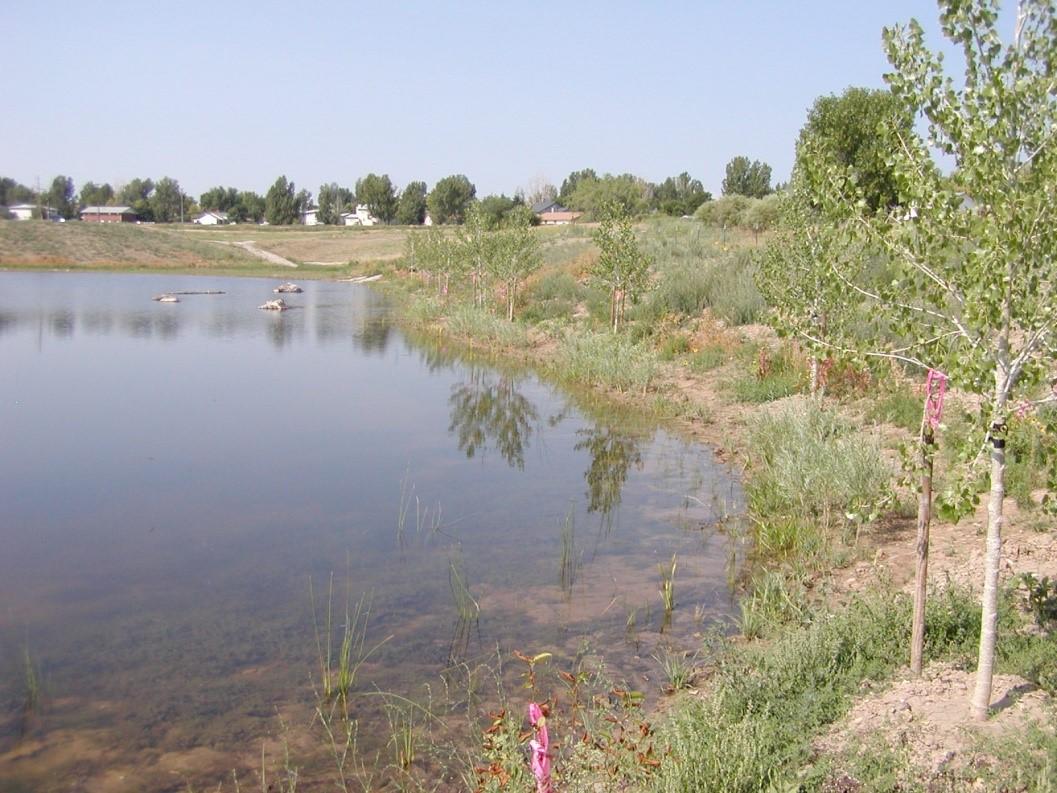 wernimont-ponds-project5