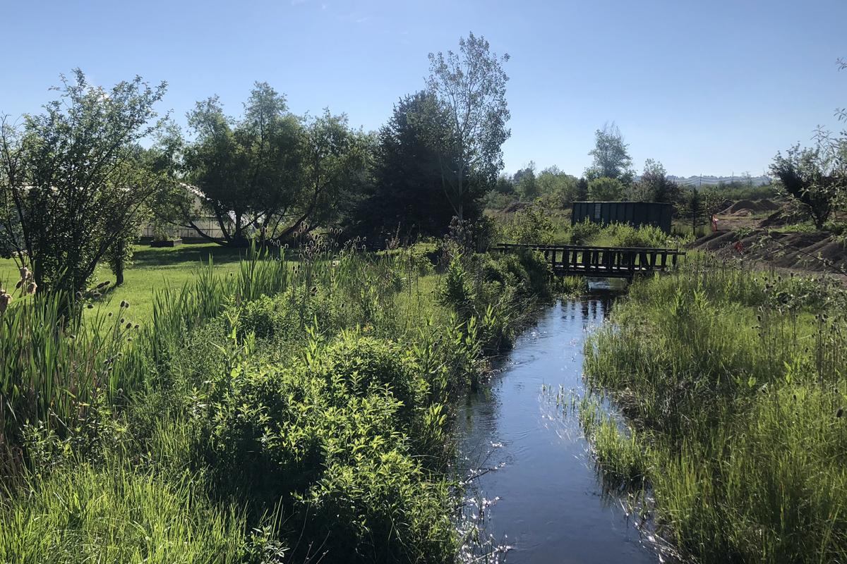 Zen Center McGinn Ditch PMJM Habitat Assessment